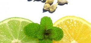 زراعة بذور الليمون