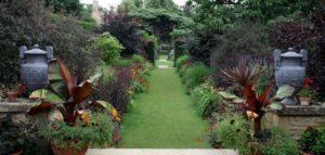 زراعة حديقة المنزل