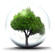 استدامة